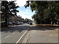 TM0495 : B1077 Connaught Road, Attleborough by Adrian Cable