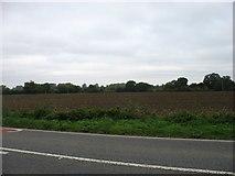 SU2097 : Farmland beside the A361 by David Purchase