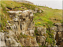 HU4840 : Cliff and Cliff Path, South Ness by David Dixon