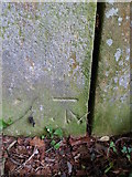 ST5038 : Benchmark on Stile near Chalice Orchard, Glastonbury by Meirion