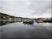 NR8668 : Tarbert - Northern View across the Loch by James Emmans