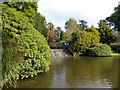 TQ4123 : The Cascade, Sheffield Park by PAUL FARMER