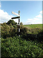TM1491 : Signpost & Low Road sign on Low Road by Adrian Cable