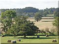 SO9155 : Looking towards Brendicot Court Farm from near Crowle by Jeff Gogarty