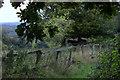 SU9595 : Path near Cherry Tree farm by Robert Eva
