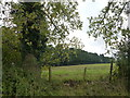 TF9319 : Countryside south of Stanfield, Norfolk by Richard Humphrey