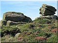 SW3424 : Rocks at Trevilley by Andrew Curtis