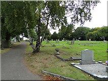 TM1763 : Debenham cemetery by Adrian S Pye