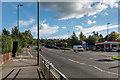 TQ1750 : Deepdene Avenue by Ian Capper