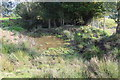 ST2098 : Farm pond, Tir-hunt by M J Roscoe