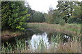 ST2097 : Large pond, Pant-ysgawen by M J Roscoe