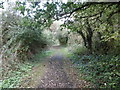 TQ9665 : The Saxon Shore Way between Conyer Creek and The Swale by Marathon