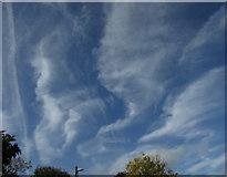 SX9065 : Clouds over Torquay by Derek Harper