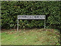 TM1689 : Hallowing Lane sign by Adrian Cable