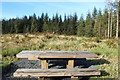 NX3578 : Picnic Table by Billy McCrorie