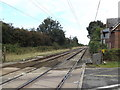 TM1689 : Railway Lines at Moulton Level Crossing by Adrian Cable