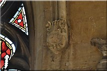 SK9136 : Grantham, St. Wulfram's Church: The celebrated hippopotamus corbel by Michael Garlick