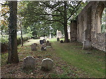 TM1685 : Churchyard & Remains of St.Mary's Church by Adrian Cable
