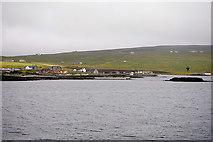 HU4841 : Bressay Sound, Leira Ness by David Dixon