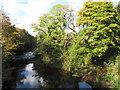 SO0602 : River Taff in Troedyrhiw by Gareth James
