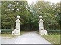 SX5255 : Gateway into The Belt, woodland area in Saltram Park by David Smith