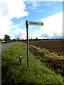 TM1094 : Signpost on Hall Road by Adrian Cable