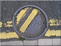 SZ0895 : Redhill: errant drain cover in Redhill Drive by Chris Downer