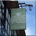 TM3389 : Sign for the Fleece Inn, Bungay by JThomas