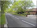 TL1496 : Busway, Orton Brimbles by Richard Vince