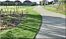 J3673 : New Connswater Greenway path, Belfast (October 2016) by Albert Bridge