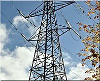 J3673 : Pylon, Dixon Park, Belfast (October 2016) by Albert Bridge