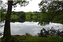 NY3404 : Reflections on Loughrigg Tarn by DS Pugh