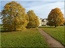 SO8844 : Autumn colours, Croome Park by Philip Halling