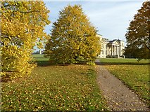 SO8844 : Autumn colours in Croome Park by Philip Halling