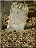 SK7431 : Limestone headstone, Harby Churchyard by Alan Murray-Rust