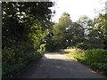 TM2380 : Wingfield Road & Bridge by Geographer