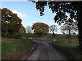TM2584 : Castle Lane, Redenhall by Geographer
