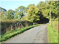 NY4948 : Road past Froddle Crook Cottage by Oliver Dixon