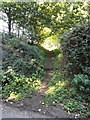 TG0723 : Entrance to Marriott's Way footpath by Adrian Cable