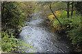 ST2193 : River Ebbw south of Chapel Farm Terrace by M J Roscoe
