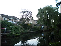 SO8999 : Houses backing onto the canal, Newbridge by Richard Vince