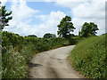 SW8537 : The old road at Tredellans by Rod Allday