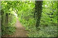 TQ1465 : Path near Esher station by Derek Harper