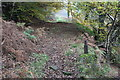 ST2198 : Byway up to Ebbw Valley Walk by M J Roscoe