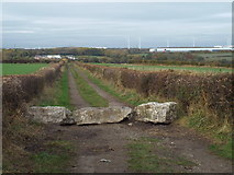 NZ3455 : Public footpath near South Hylton by Malc McDonald