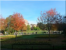 SZ0891 : Bournemouth: autumn colours (but no balloon) in the Gardens by Chris Downer