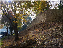 SK8608 : Wall and earthworks at Oakham Castle by Mat Fascione