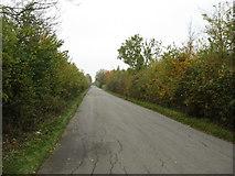 SU0793 : The road to Ashton Keynes by David Purchase