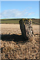NO8175 : Millplough Recumbent Stone Circle (5) by Anne Burgess