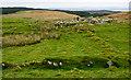 NR2057 : Ruins on Cnoc Mòr by Trevor Littlewood